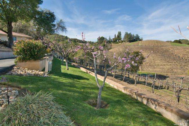 3315-Dry-Creek-Road-Napa.jpg #1