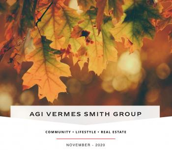 AVS Group November Newsletter